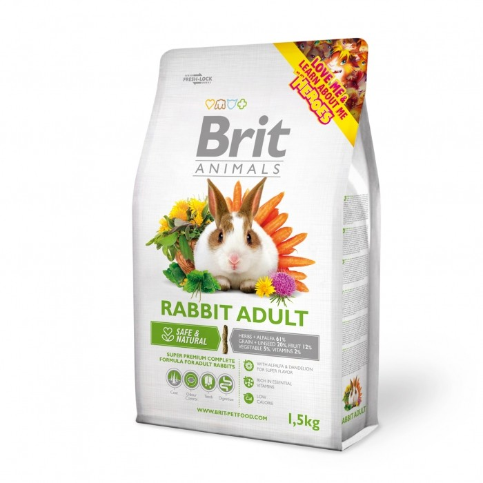 Rabbit Adult