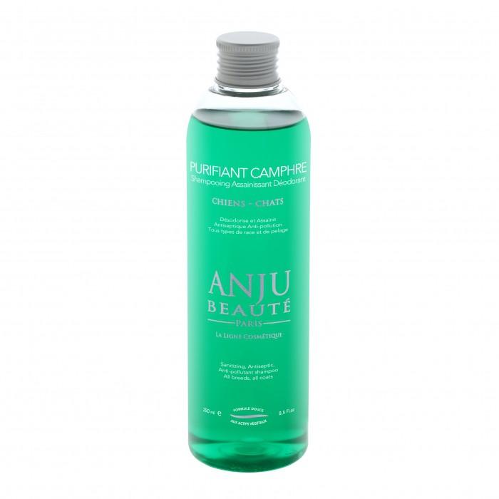 Shampooing déodorant Purifiant Camphre