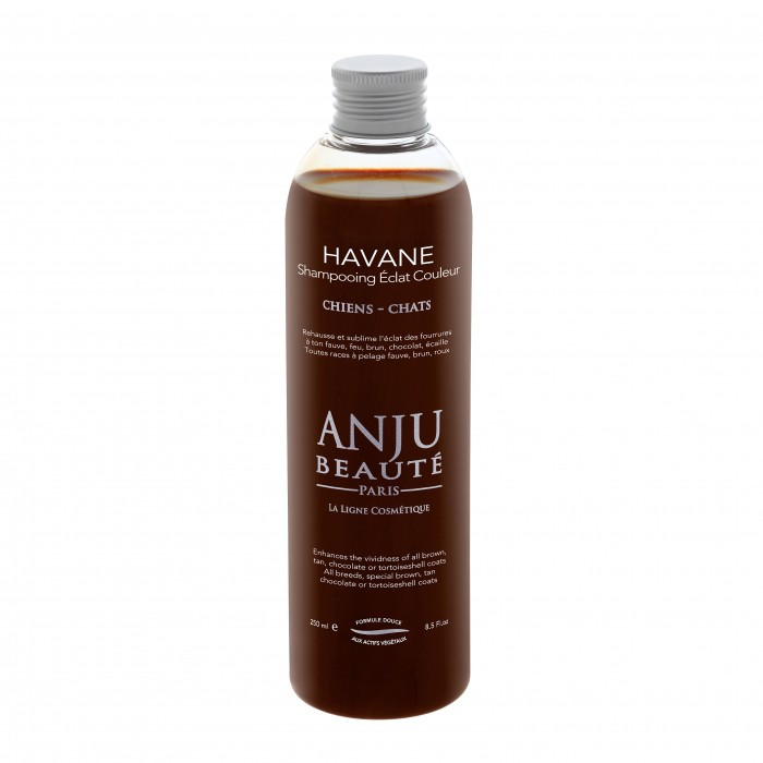 Shampooing éclat couleur Havane
