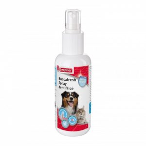 Spray dentifrice Buccafresh