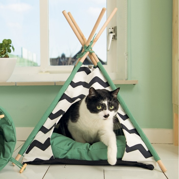 Tipi Bengy